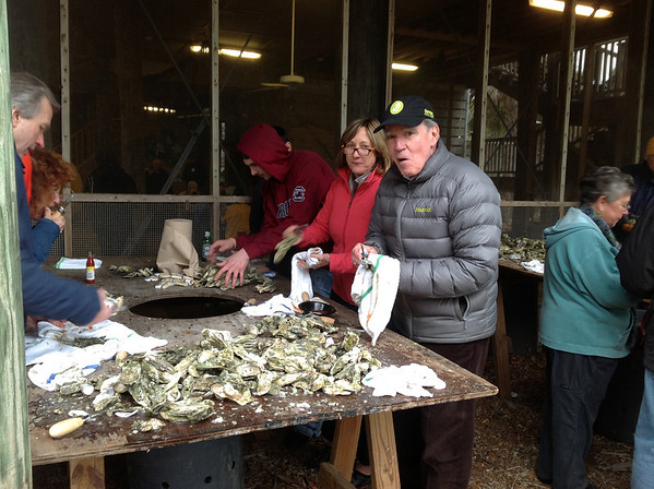 cleaning oysters